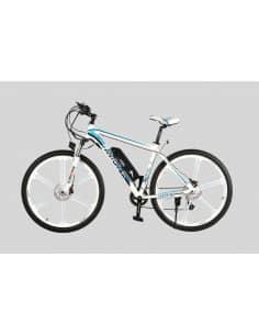 Elektryczne Rower Fantom BLUE MOON M29