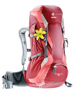Plecaki Trekkingowe Plecak Deuter Futura 30 SL 34244 Deuter